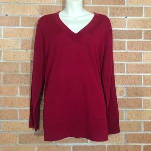 J Jill Merino Wool Medium V Neck Sweater